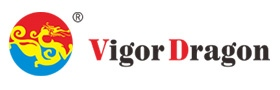 VigorDragon